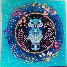 """Mi búho #MiBosqueEncantado #EnchantedForest #JohannaBasford @johannabasford @artesecreta @nossaflorestaencantada """