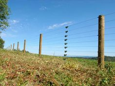 Game fencing keeping animals in and intruders out
