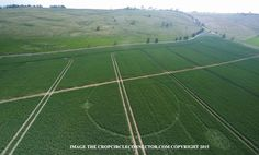 Kornkreise 2015: Erste Formation des Jahres in England entdeckt . . . http://grenzwissenschaft-aktuell.blogspot.de/2015/04/kornkreise-2015-erste-formation-des.html . . . Abb.: cropcircleconnector.com
