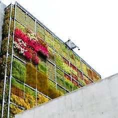 6-story vertical garden for children's library in Spain - This is so cool!