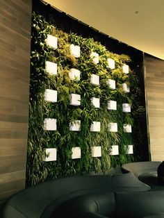 Photo 1: Green wall in an office building brings the outside in and provides a natural backdrop in an otherwise cold/corporate environment