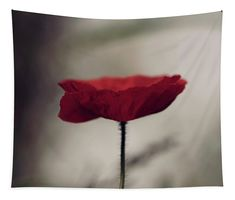 Poppy Tapestry featuring the photograph Pop Of Colour by Helen Kelly
