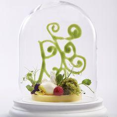Lemon Panna Cotta, Yoghurt Sorbet and Pistachio Moss. #alisonprice #foodofinstagram #foodstagram #chefsofinstagram #hipsterfoodies #theartofplating #gastroart #instadaily #instafood #picoftheday #instagood #lovefood #foodstyling