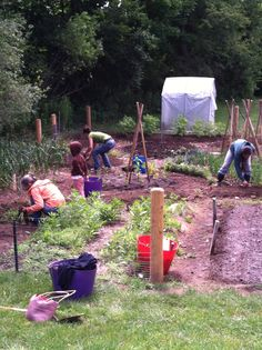 """Geri is a parent at Berkshire Trail Elementary School in Cummington, MA. """"Building the garden into the school curriculum, teaching organic gardening practices, composting and recycling systems, soil health and composition, a whole foods diet, and environmental stewardship are our goals for our garden's sustainability program."""" #diggingdeeper"""