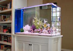 16 Truly Amazing Interiors With Fascinating Aquarium