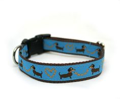 Dooney And Bourke Dog Collar