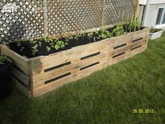 Outdoor Pallet Projects Flower and Vegetables planter in pallet garden with Planter Pallets Flowers - Little flowers house and vegetable planters made from recycled pallets. The pallet planter idea is coming from our imagination. Pallet Garden Box, Pallets Garden, Garden Boxes, Pallet Gardening, Garden Ideas With Pallets, Pallet Planter Box, Pallet Flower Box, Flower Boxes, Vegetable Planters