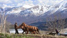 Exención de impuestos a empresas de frontera armenias