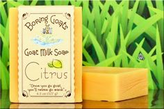 """""""Citrus"""" Goat Milk Soap. 100% Natural ingredients. Natural citrus oils and goat milk produce a light, clean refreshing scent you'll love. Best described as walking blindfolded through a citrus grove, minus the pucker factor and the fear of running into a tree. 4.5 to 5 oz's!"""