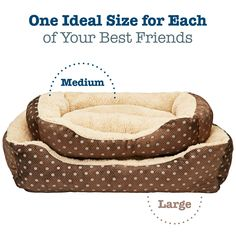 Animals Favorite Dog Bed Luxury Embossed Rectangle Bed Medium ** More info could be found at the image url.-It is an affiliate link to Amazon. #DogBedsFurniture