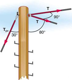 5: Further Applications of Newton's Laws: Friction, Drag, and Elasticity (Exercises) - Physics LibreTexts University Physics, College Physics, Lifting Safety, Normal Force, Terminal Velocity, Newtons Laws, Printable Coloring Pages, Problem Solving