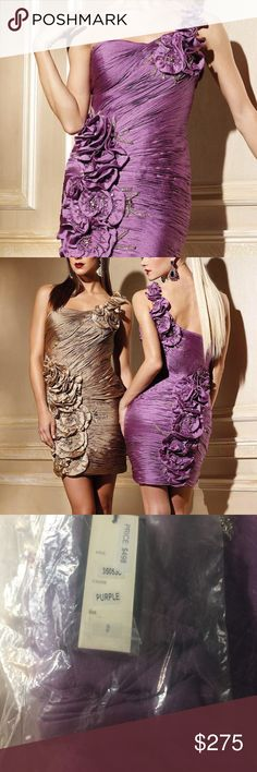 Brand new Beautiful Terani Dress!  👗👗 New and authentic Terani Purple one shoulder dress. Style number 35053c. Terani Couture Dresses