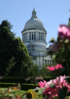 Capitol Building, Olympia, WA- I miss this place. I spent so much time in that building meeting with legislators and the governor advocating for foster youth...