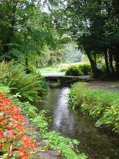 Holy Well, Sligo. An interesting site for Christian and pre-Christian (Goddess) followers.