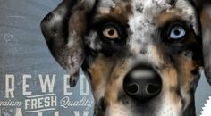 Catahoula Leopard Dog Cur Coffee Company graphic by geministudio