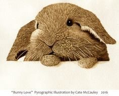 """Bunny Love"" (and who couldn't use some of that?)"