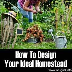 Here you will find an in-depth guide that will outline all of the main considerations in a homestead design. A homestead usually covers a few acres of land, combining small-scale farming and growing for self-sufficiency. This guide is aimed at making the homestead layout as efficient and productive as possible so it's an ideal introduction for anyone wanting to adopt a homesteading life.