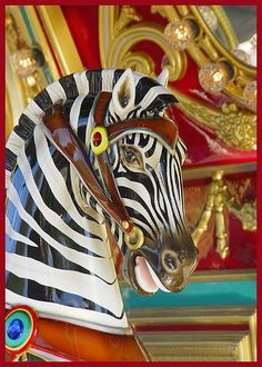 A Zebra Rounds Marilyn's Carousel At The Living Desert Zoo and Botanical Garden.