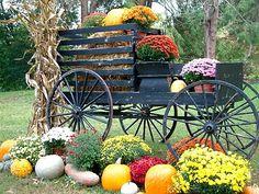 Verde Farm: Fall At The Farm