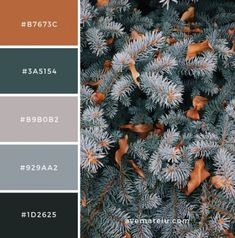 Aspen, United States Color Palette : Gorgeous winter color palette featuring teals, golds, and greys for a cold feel with just a touch of warmth Aspen, Colour Pallette, Color Combos, Boy Room Color Scheme, Lavender Color Scheme, Gold Color Scheme, Decoration Palette, Winter Colors, Winter Color Palettes