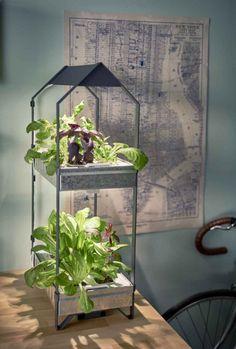 Zdjęcie numer 3 w galerii - Balkon - kawałek ogrodu w każdym domu