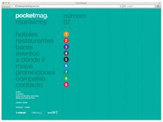 Face: Pocketmag Identity and Collateral