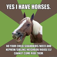 "Ok people, remember this, write it down if you must.  My horses are not the cute little ponies at the petting zoo, they are finely tuned athletic machines. if you want little kids to ride a ""horsie"" go to the fair."