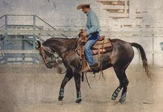 http://fineartamerica.com/featured/ranch-horse-being-schooled-kae-cheatham.html
