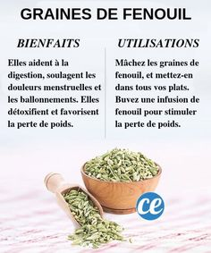 Essential Tips And Tricks For Eating A Healthy Diet – Nutrition Nutrition Holistique, Holistic Nutrition, Nutrition Plans, Nutrition Information, Complete Nutrition, Foods That Contain Calcium, Healthy Potatoes, Vitamin K2, Base