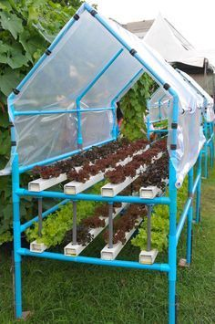 Hydroponic Gardening Best Hydroponic Garden Ideas 220 - Simply observed from the origin he said Hydroponics cultivation means a method of cultivating plants without using soil media, but utilizing water / nutritional mineral solution needed by plants an… Aquaponics System, Hydroponic Farming, Hydroponic Growing, Home Hydroponics, Aquaponics Greenhouse, Aquaponics Plants, The Farm, Organic Gardening, Gardening Tips