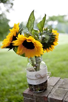 Sandy & Ben's volleyball & bonfire tie-dyed wedding. Sunflowers in a jar. IMG_7267-1 by Sanmarie2011, via Flickr