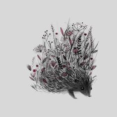 Hedgehog, an art print by Linette No - INPRNT