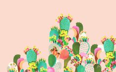 Cactus by Helen Dealtry.