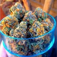 Visit us and place your order NOw at https://www.jointcannabisdispensary.com . Buy the Highest Quality Marijuana strains White Widow,sour Diesel,Harlequin,Blue dream,Lemonn haze,granddaddy purple,Cannabis oil for patients with illness like cancer,pain,anxiety, liver problem,epilepsy and more Order weed online, Buy weed online,Buy Marijuana online,buy moonrocks online ,Go to..https://www.jointcannabisdispensary.com Text or call +1(408)909-1859