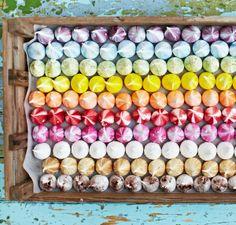 meringue-girls-cookbook-by-alex-hoffler-and-stacey-ogorman.jpg 1198×1146 pixels