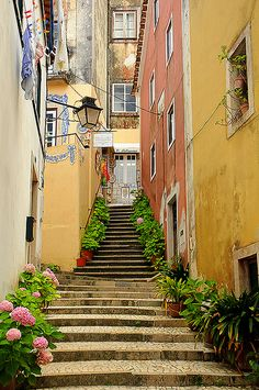 Sintra, Portugal (I know exactly where this alley is!!) welcome to sintra ENJOY PORTUGAL HOLIDAYS www.enjoyportugal.eu