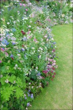 Idea Of Making Plant Pots At Home // Flower Pots From Cement Marbles // Home Decoration Ideas – Top Soop Garden Gates, Garden Art, Garden Ideas, Green Flowers, Wild Flowers, Path Design, Enchanted Garden, Backyard Landscaping, Beautiful Gardens