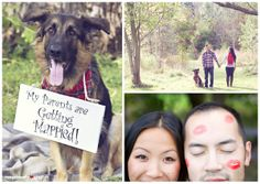 Love the dog (Einstein!) sign!  Fishing For Love: Bernard & Mickies Engagement at Lowville Park Toronto Ontario Vintage Wedding Photography by Renaissance Studios Photography