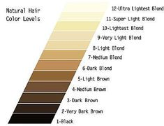 18 best hair color level chart images hair coloring hair dye chart