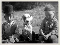 Per vivere felici, basta guardare come fanno i bambini e gli animali. (Stephen Littleword)  www.cancorso.it cancorso2013, cancorso, cani, cane, concorso, concorsi, contest, ilmessaggero, quotidiano, animali, storie, canstorie, coppie, cancoppie, citazione, citazioni, Simpatiche Canaglie