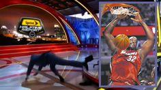 NBA-Legende Shaquille O´Neal legt sich lang. Während einer Live-Sendung. http://www.bild.de/sport/mehr-sport/headlines/legt-sich-auf-die-fr-40876088.bild.html