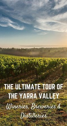The Ultimate Tour of the Yarra Valley - Wineries, Breweries and Distilleries - keep everyone happy on your Yarra Valley Tasting Day!