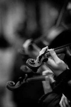 Violins in B&W