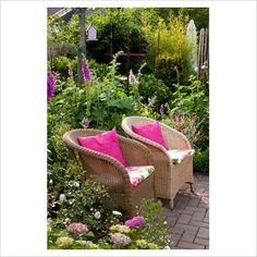 GAP Photos - Garden & Plant Picture Library - Small garden with wicker chairs surrounded by Digitalis - Foxgloves and Hydrangea - Scheper Town Garden - GAP Photos - Specialising in horticultural photography