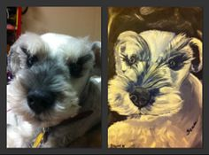 My latest Painting Cute Little Sean, Miniature Schnauzer.. Mixed Media , acrylic and Oil.. 11X14
