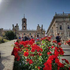 A rampa para o Campidoglio também está toda florida!!!!  .  Lembre-se que nós fazemos o seu roteiro personalizado em Roma organizamos o seu transfer do/para o aeroporto e também sua hospedagem! info@emroma.com .  Veja mais no Snapchat Em_Roma  #Roma #europe #instatravel #eurotrip #italia #italy #rome #trip #travelling #snapchat #emroma#viagem #dicas #ferias #dicasdeviagem #brasileirospelomundo #viajandopelomundo #flores #azaleia #primavera #campidoglio #capitolinehill