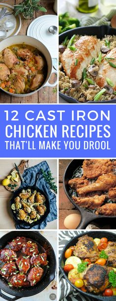 Yum - can't wait to get the skillet out and try these cast iron chicken recipes! Thanks for sharing!