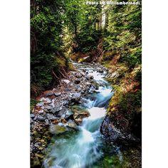 【williambernadi】さんのInstagramをピンしています。 《Don't feel sad for your ears as rocks never regret the waterfalls . . . . . . . #川 #滝 #秋 #森林 #水 #クリーク #река #водопад #падать #лес #воды #ручей #강 #폭포 #가을 #숲 #물 #언덕 #leaf #leafs #moss #tropical #heaven #park #travel #traveling #traveler #trip #wanderlust #williambernadi》