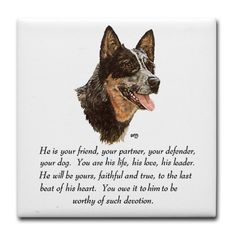 The Queensland Heeler, also know as the Australian Cattle Dog.  I love them.