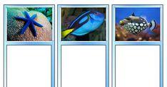Coral Reef Matching Cards - Toob.pdf Ocean Unit, Montessori Classroom, Matching Cards, Marine Biology, Coral, Pdf, Homeschooling, Australia, Nursery School